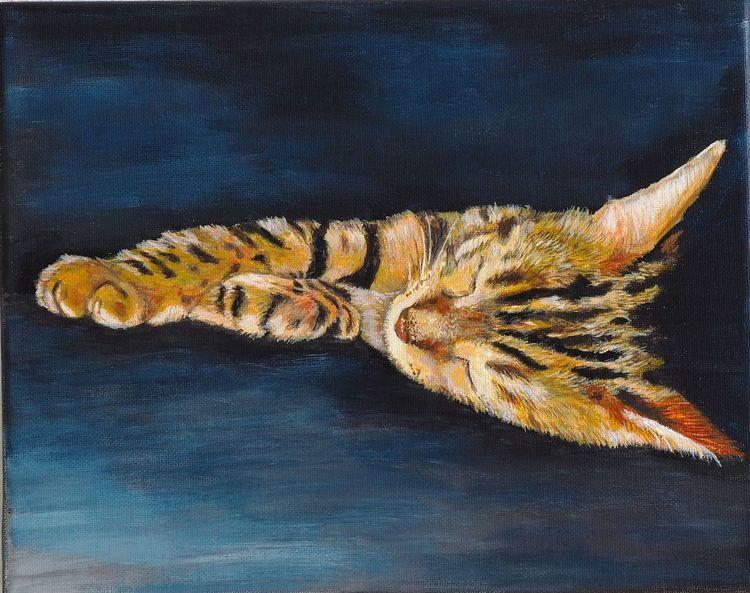 Katze, Bengalkatze, Schlaf, Ruhe, Tagschlaf, Malerei