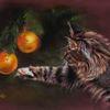 Katze, Weihnachten, Zeichnungen