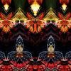 Abstrakt, Blumen, Bschoeni, Rot schwarz
