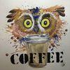 Eule, Kaffe, Nachttier, Tiere