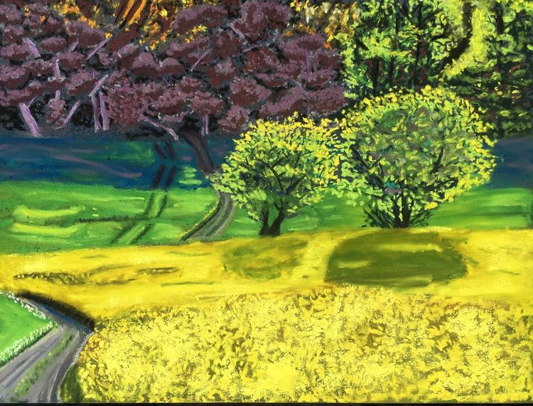 Landschaft, Rapsblüte, Frühling, Licht, Pastellmalerei, Schatten