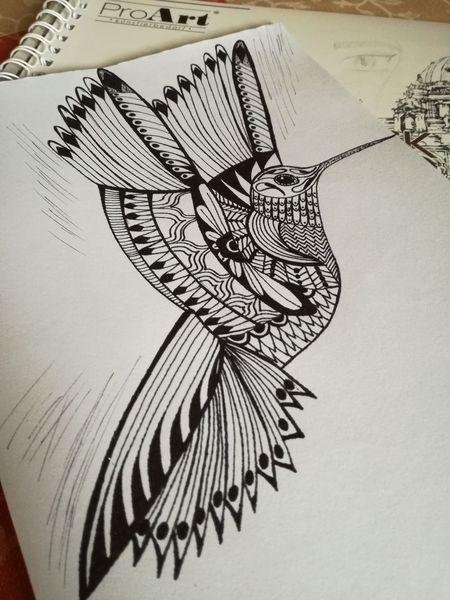 Schwarz, Vogel, Zeichnungen,