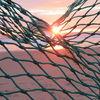 Glaskugel, Sonne, Digitale kunst, Netz