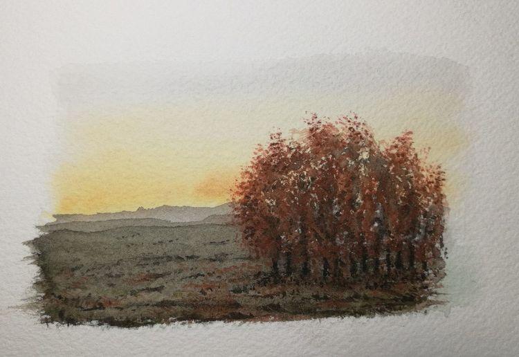 Baum, Abend, Sonne, Aquarell