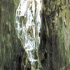 Kakadu, Vogel, Weiß, Malerei
