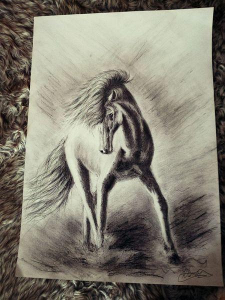 Zeichnung, Liebe, Pferde, Malerei, Anmut