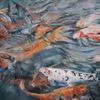 Wasser, Teich, Koi, Fische