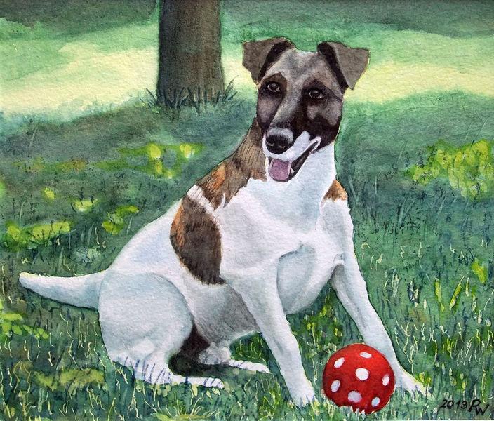 Terrier, Grün, Hund, Rot, Ball, Aquarellmalerei