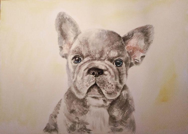 Aquarellmalerei, Französische bulldogge, Aquarell tiere, Tiere, Tierportrait, Hund