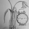 Vergänglichkeit, Tulpen, Zeit, Zeichnungen
