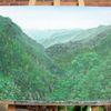 Madeira, Urwald, Regenwald, Wald