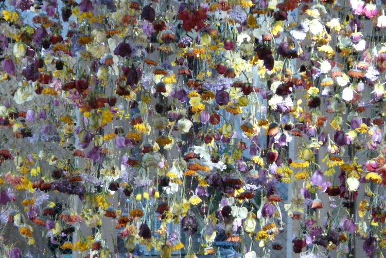 Bunt, Dekoration, Ostern, Blumen, Fotografie
