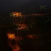 Nacht, Licht, Bunt, Fotografie