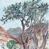 Weihrauchbaum, Aquarellmalerei, Landschaft, Aquarell