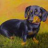 Hund, Vierbeiner, Acrylmalerei, Dackel