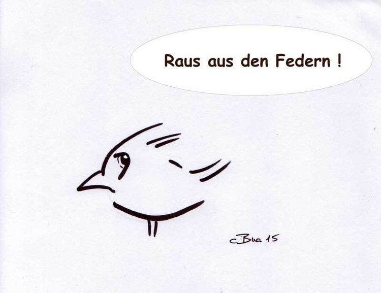 Comic, Cartoon, Amsel, Zeichnungen