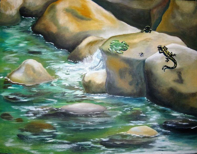 Bach, Frosch, Fluss, Feuersalamander, Wasser, Fliege