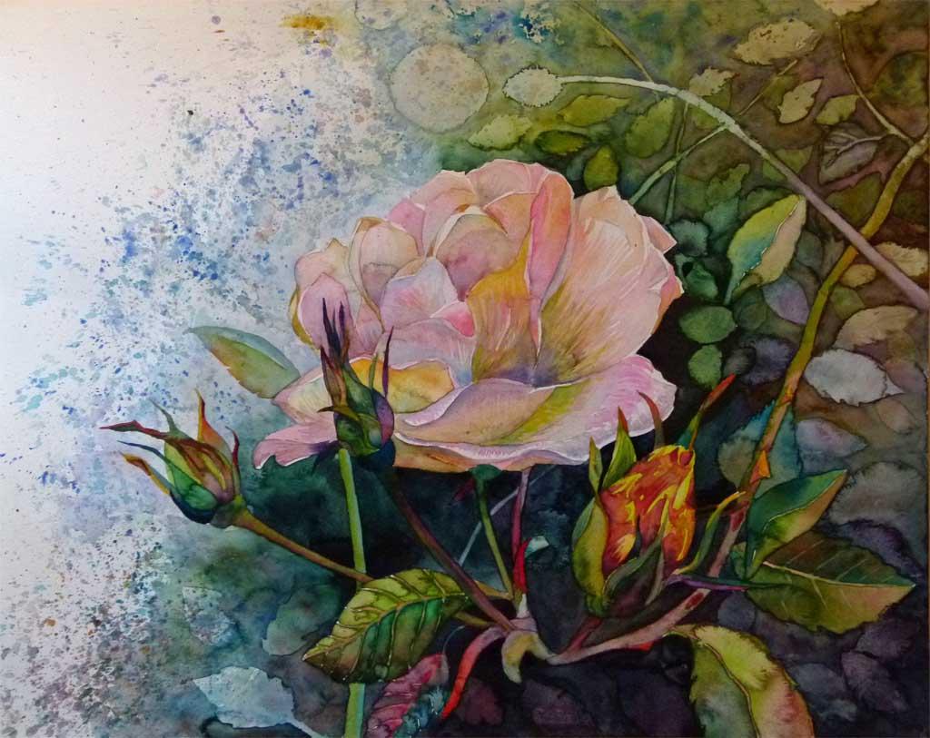 blüten in der herbstsonne c rosen aquarell von frank
