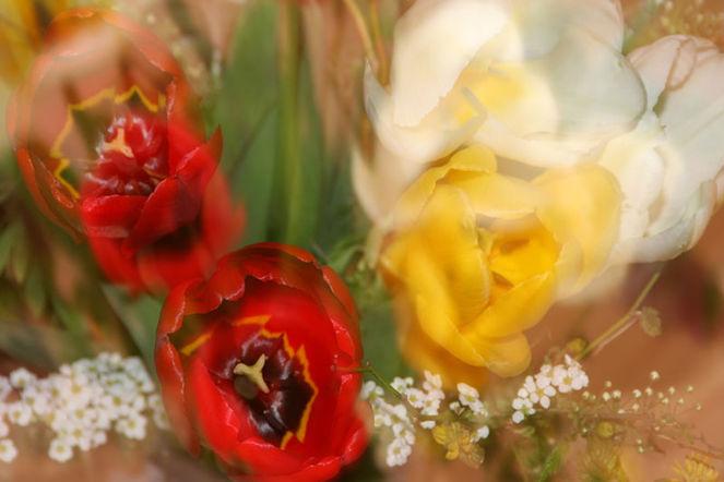 Lichtmalerei, Blumen, Blumenstrauß, Lightpainting, Blüte, Verwischen