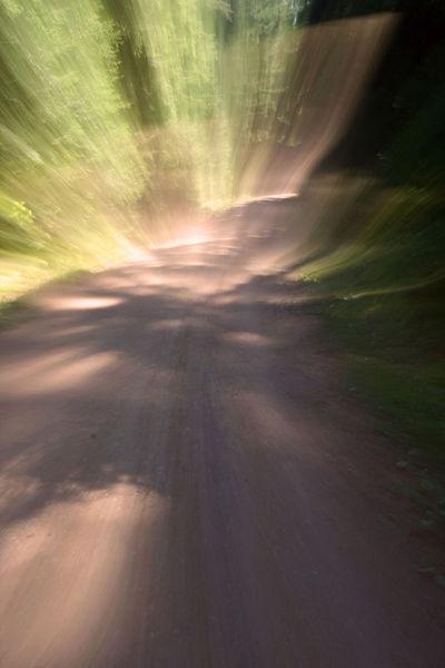 Weg, Waldweg, Lichtmalerei, Lightpainting, Wischeffekt, Fotografie