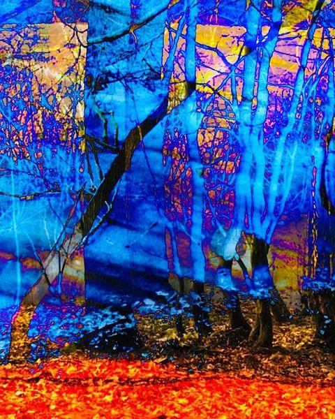 Rot, Birkenstämme blau, Durchscheinende welten, Digitale kunst, Unendlichkeit