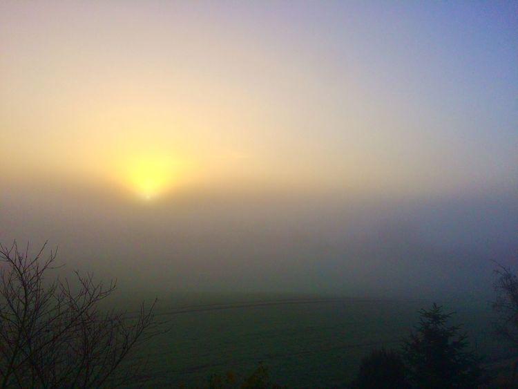 Nebel, Vovember, Sonne, Morgen, Fotografie, Sprache