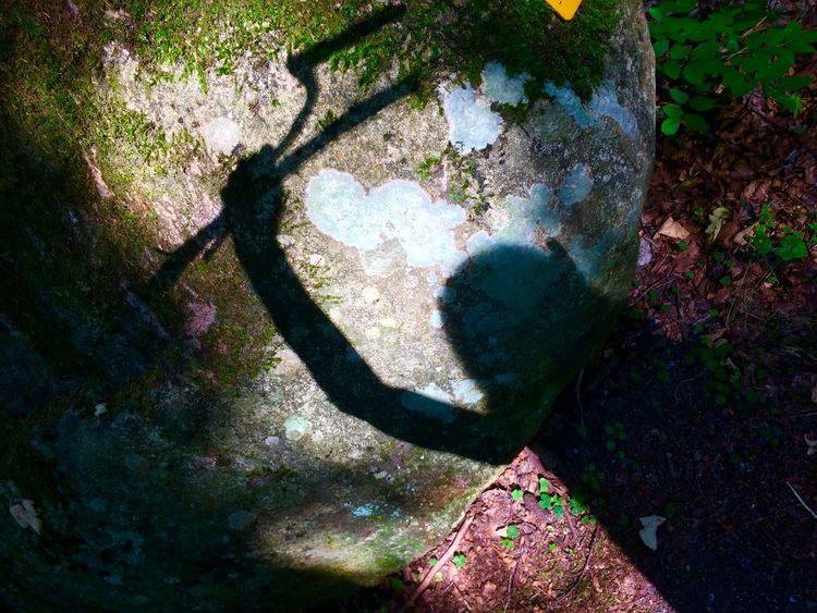 Schatten, Waffe, Findling, Moos, Mischtechnik