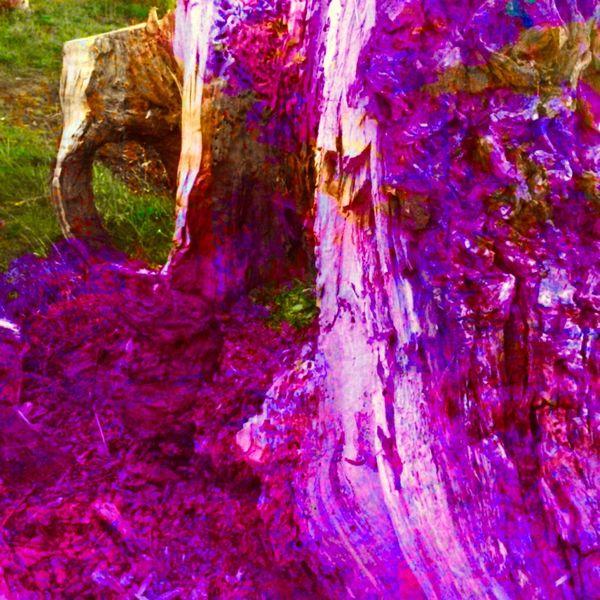 Ein gedicht, Baumstumpf in pink, Schreib ihm, Mischtechnik