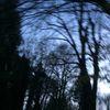 Verrauschte töne, Ins gestern gedreht, Verschlungene lichter, Fotografie