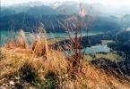 Fotografie, Landschaft, Blick