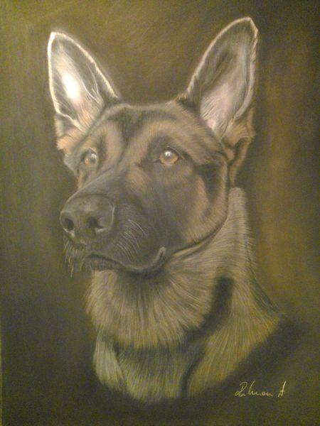 Hund, Pastellmalerei, Malerei, Haus,