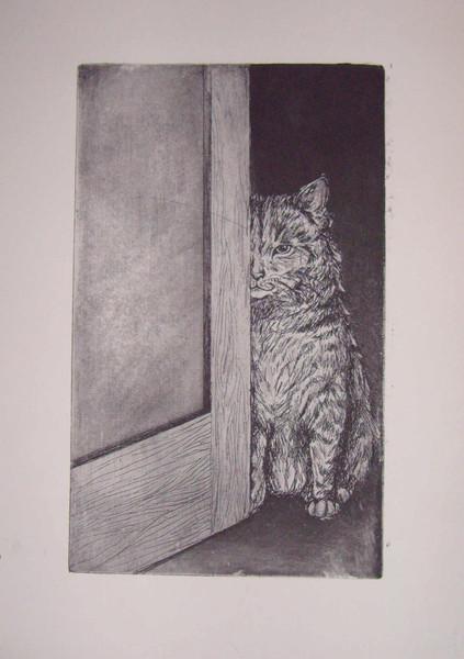 Tiere, Grafik, Katze,
