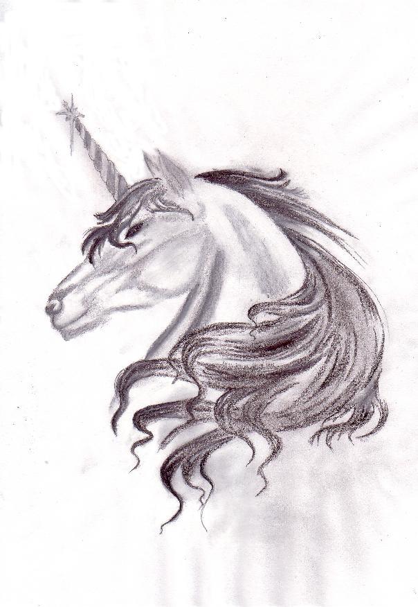 bild einhorn zeichnung zeichnungen mythologie von dorina bei kunstnet. Black Bedroom Furniture Sets. Home Design Ideas