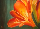 Malerei, Stillleben, Orange, Amaryllis