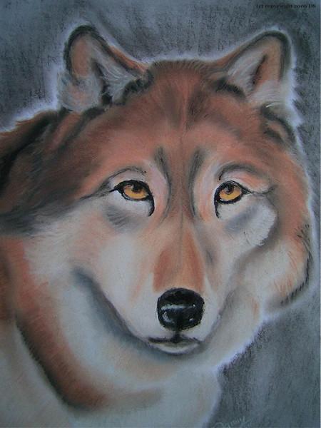 Zeichnung, Skizze, Hund, Pastellmalerei, Zeichnungen