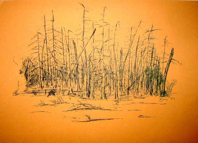 Ölmalerei, Beschriftung, Ausstellung, Grafikdesign, Neustadt, Abstrakt