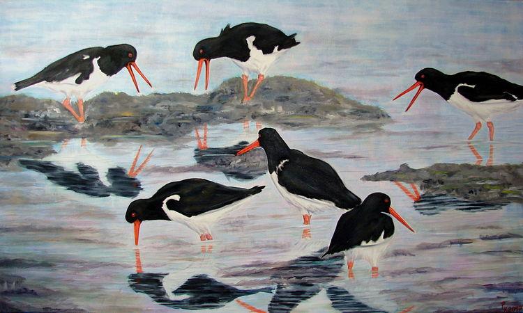 Vogel, Ölmalerei, Austernfischer, Meer, Wattenmeer, Malerei