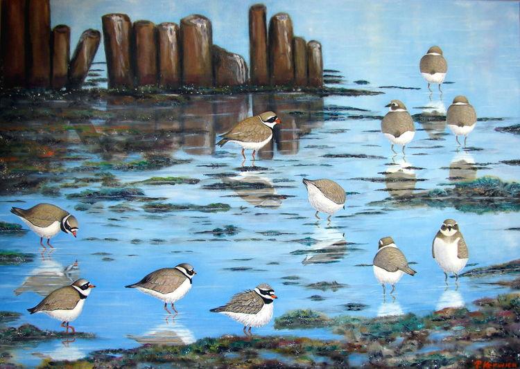 Vogel, Wattenmeer, Ölmalerei, Sandregenpfeifer, Watt, Malerei