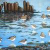 Ölmalerei, Vogel, Sandregenpfeifer, Watt