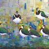 Kiebitze, Vogel, Ölmalerei, Malerei