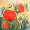 Blumen, Stillleben, Malerei, Mohn