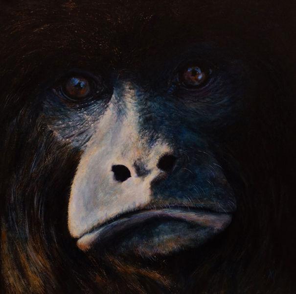 Tierwelt, Tiere, Brüllaffe, Affe, Gemälde, Realismus
