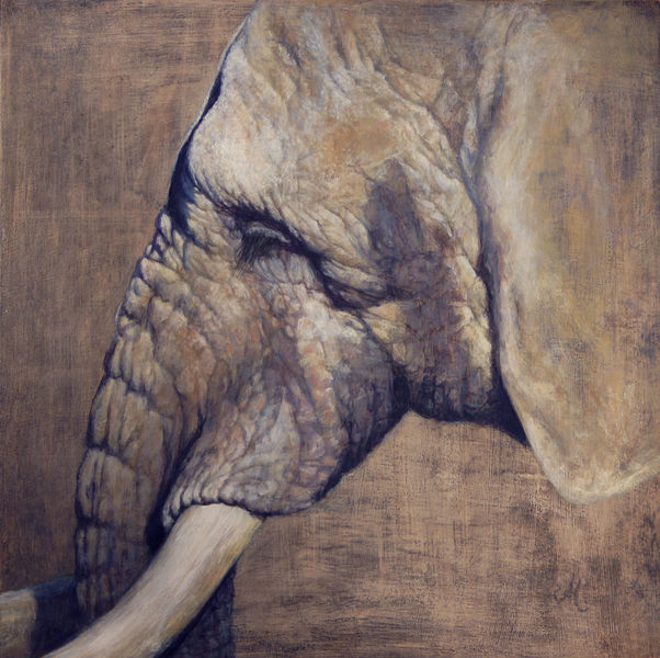 Elefant, Hübsche, Realismus, Wildlife realistisch, Malerei,