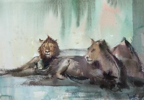 Löwe afrika botswana, Aquarell