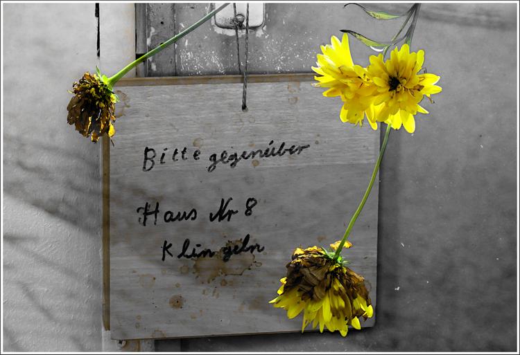 Gegenüber, Haus, Klingel, Fotografie, Lost places