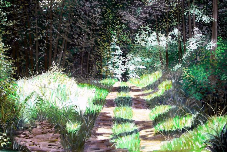 Wald, Licht und schatten, Sommer, Weg, Natur, Malerei