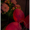 Ostern, Blüte, Photoshop, Textur