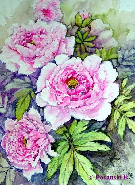 Blumen, Aquarell, Aquarelle blumen, Pfingstrosen