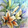 Blumen, Lilien, Aquarell, Aquarelle blumen