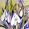 Schneeglöckchen, Blumen, Aquarell, Aquarelle blumen